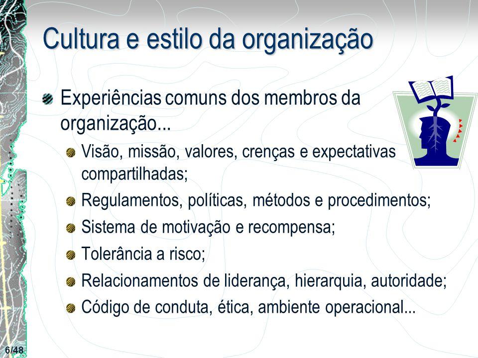 Cultura e estilo da organização
