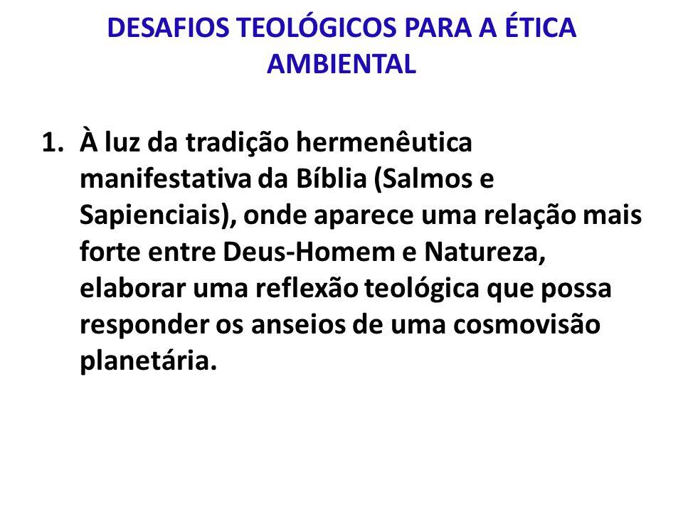DESAFIOS TEOLÓGICOS PARA A ÉTICA AMBIENTAL