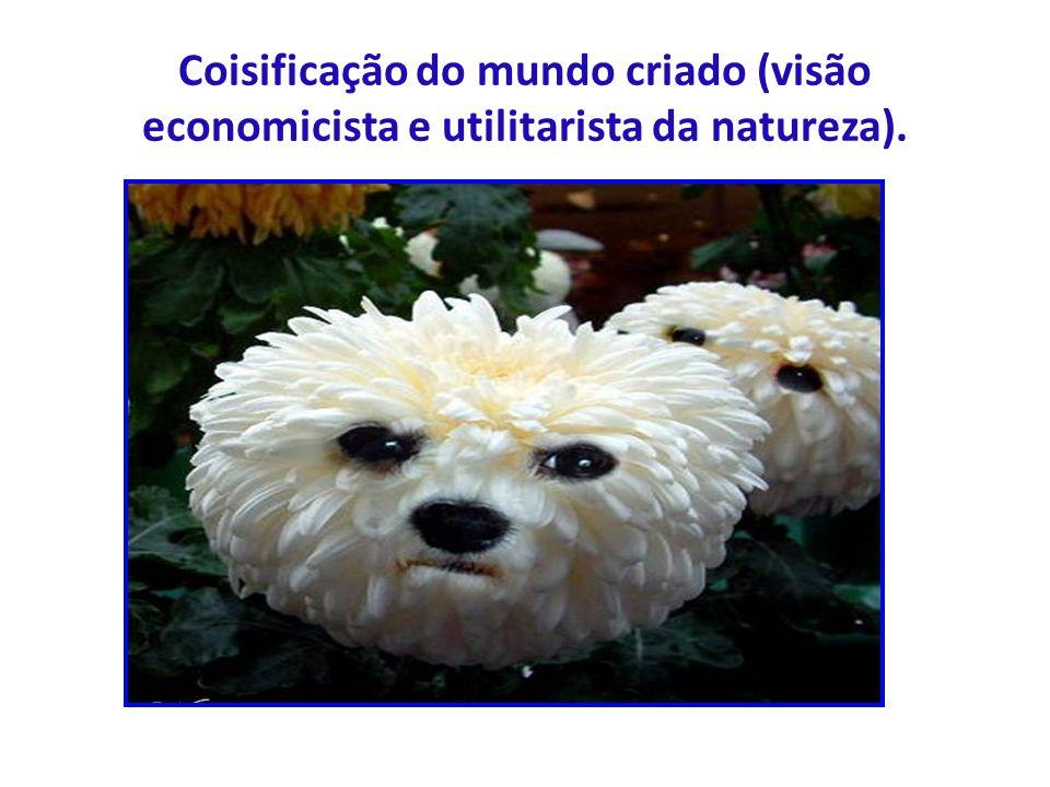 Coisificação do mundo criado (visão economicista e utilitarista da natureza).