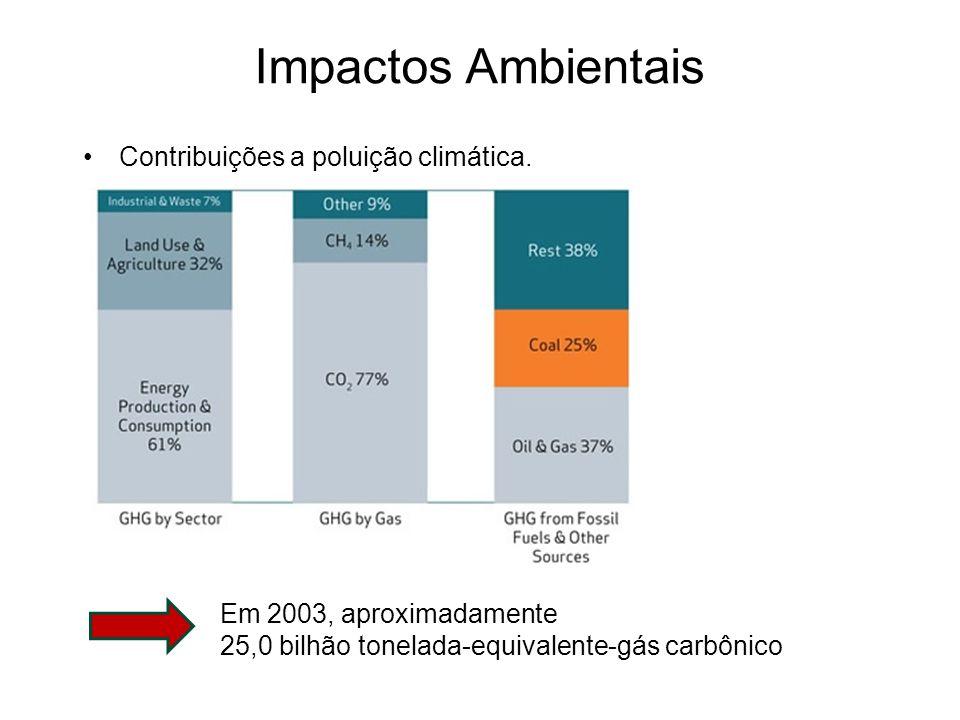 Impactos Ambientais Contribuições a poluição climática.