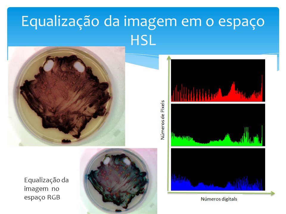 Equalização da imagem em o espaço HSL