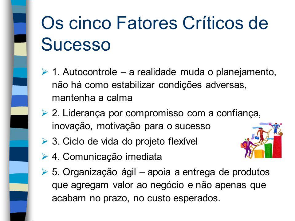 Os cinco Fatores Críticos de Sucesso