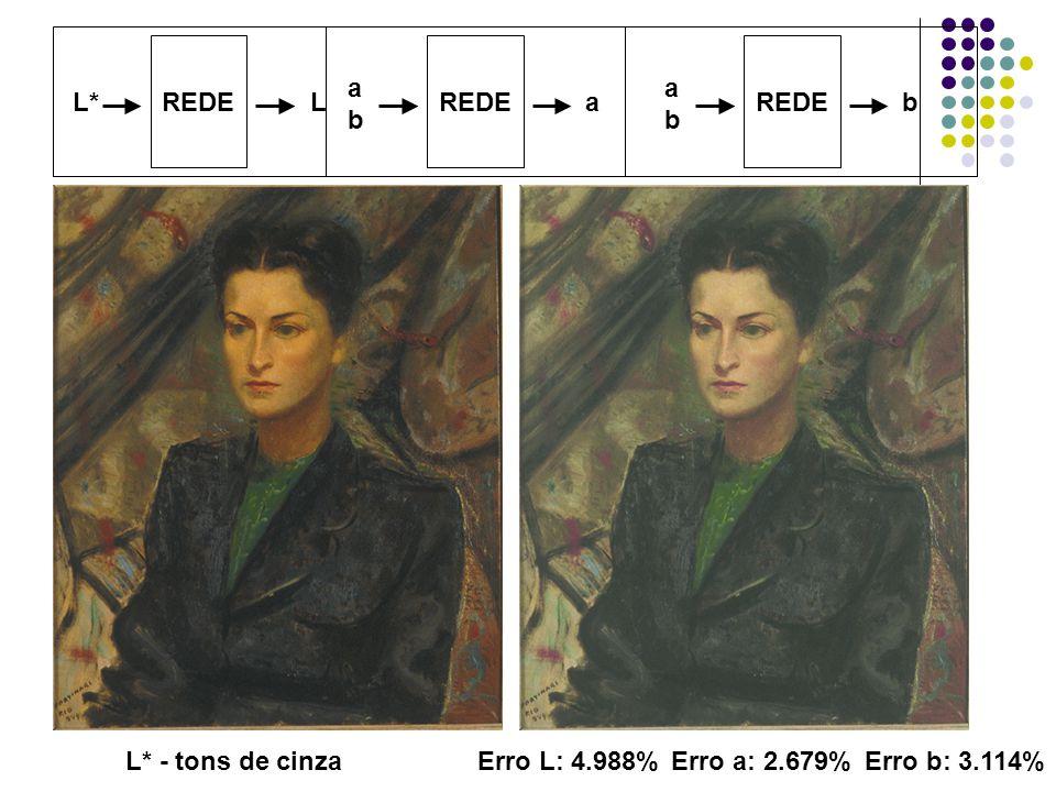 REDE REDE REDE a b a b L* L a b L* - tons de cinza Erro L: 4.988% Erro a: 2.679% Erro b: 3.114%