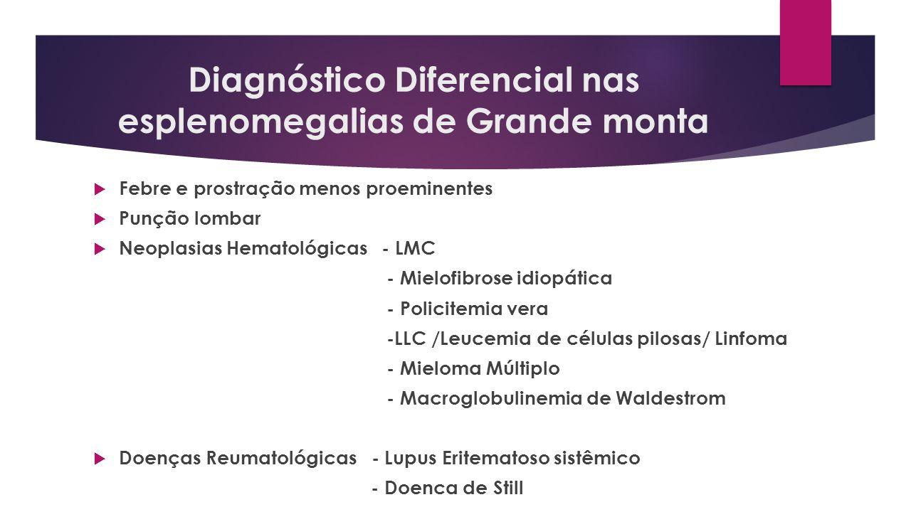Diagnóstico Diferencial nas esplenomegalias de Grande monta