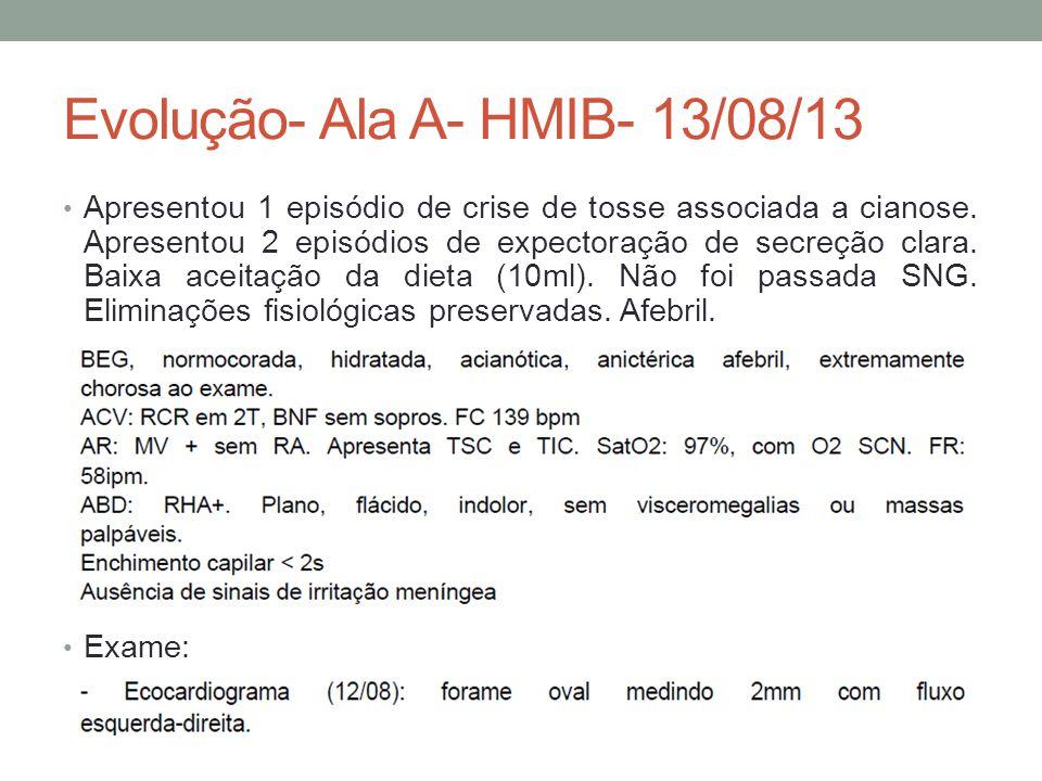 Evolução- Ala A- HMIB- 13/08/13