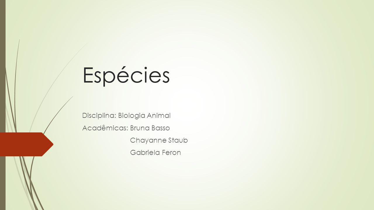 Espécies Disciplina: Biologia Animal Acadêmicas: Bruna Basso