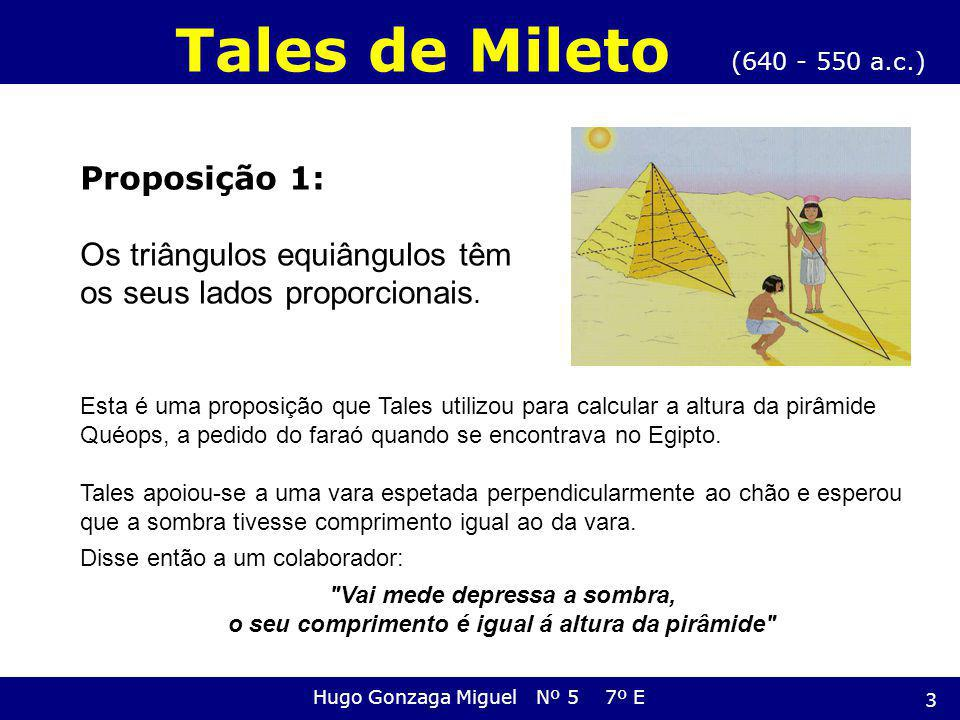 Tales de Mileto Proposição 1: Os triângulos equiângulos têm