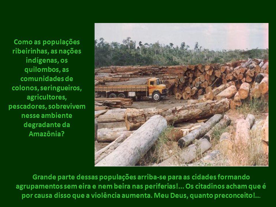 Como as populações ribeirinhas, as nações indígenas, os quilombos, as comunidades de colonos, seringueiros, agricultores, pescadores, sobrevivem nesse ambiente degradante da Amazônia