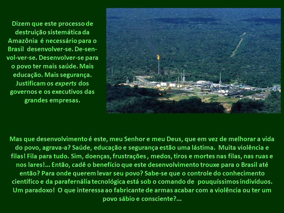 Dizem que este processo de destruição sistemática da Amazônia é necessário para o Brasil desenvolver-se. De-sen-vol-ver-se. Desenvolver-se para o povo ter mais saúde. Mais educação. Mais segurança. Justificam os experts dos governos e os executivos das grandes empresas.