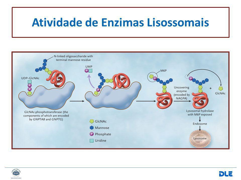 Atividade de Enzimas Lisossomais