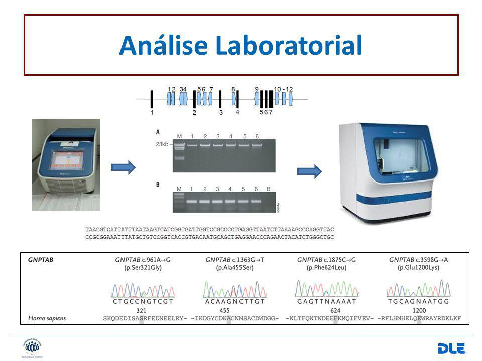 Análise Laboratorial