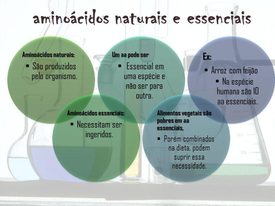 aminoácidos naturais e essenciais