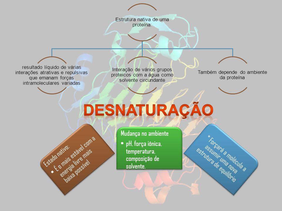 Desnaturação É o mais estável com a energia livre mais baixa possível