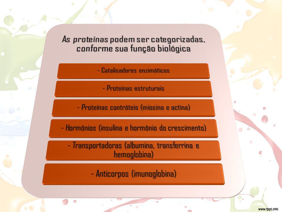 As proteínas podem ser categorizadas, conforme sua função biológica