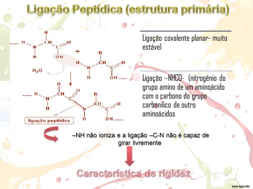 Ligação Peptídica (estrutura primária) Característica de rigidez