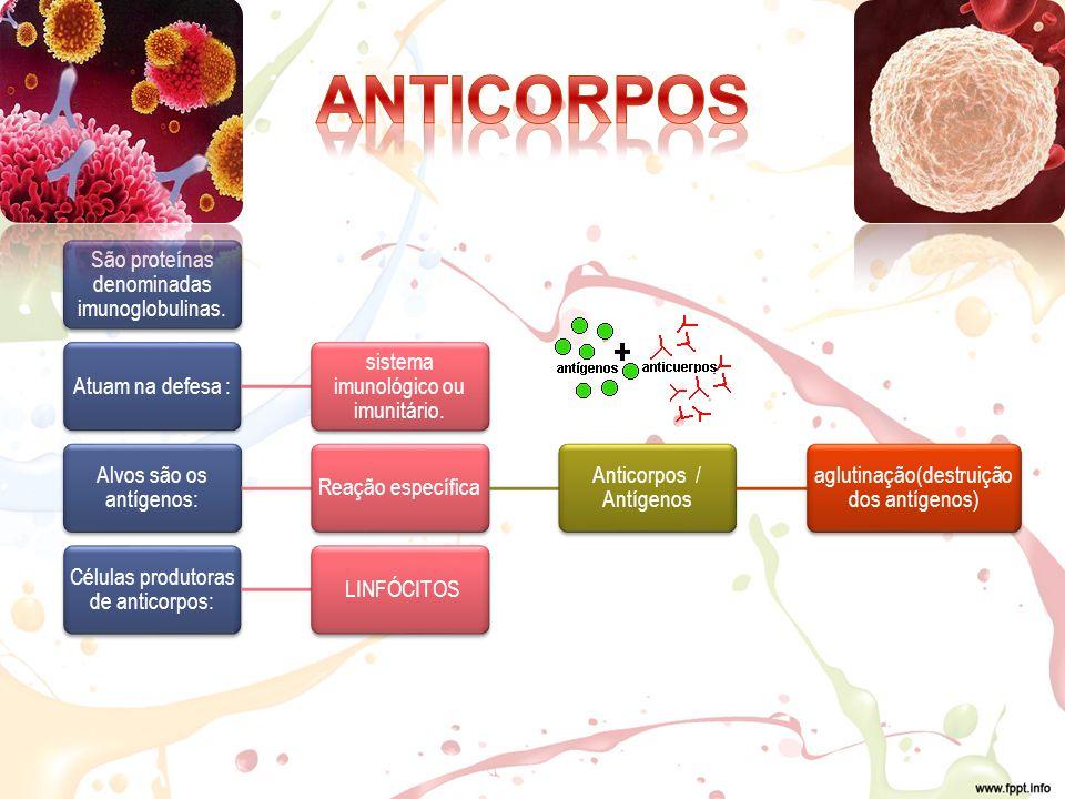 ANTICORPOS São proteínas denominadas imunoglobulinas.