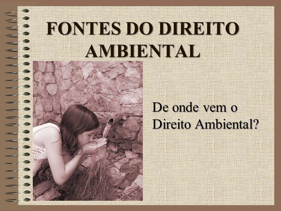 FONTES DO DIREITO AMBIENTAL