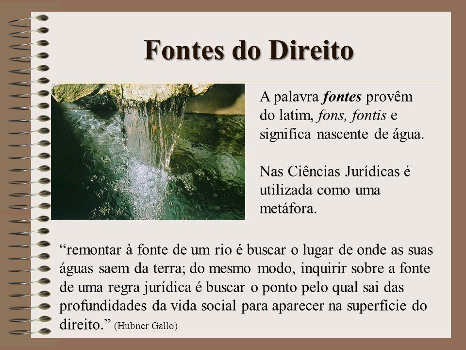 Fontes do Direito A palavra fontes provêm do latim, fons, fontis e significa nascente de água. Nas Ciências Jurídicas é utilizada como uma metáfora.