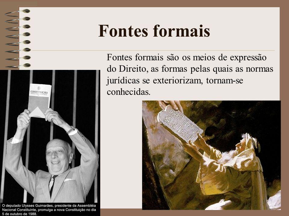 Fontes formais Fontes formais são os meios de expressão do Direito, as formas pelas quais as normas jurídicas se exteriorizam, tornam-se conhecidas.