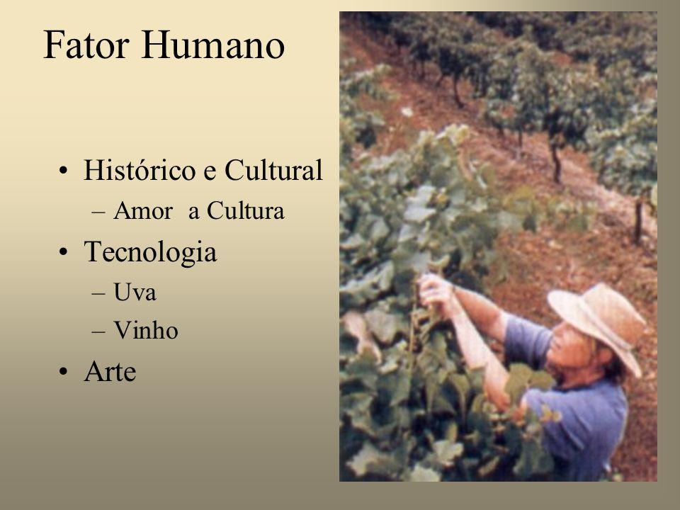 Fator Humano Histórico e Cultural Tecnologia Arte Amor a Cultura Uva