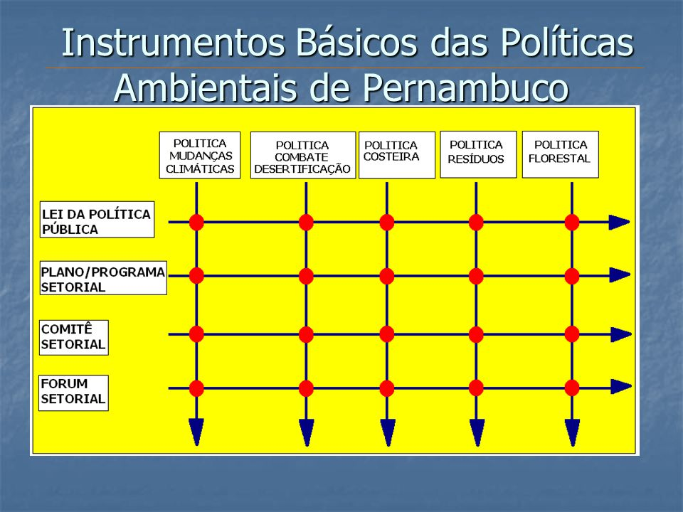 Instrumentos Básicos das Políticas Ambientais de Pernambuco
