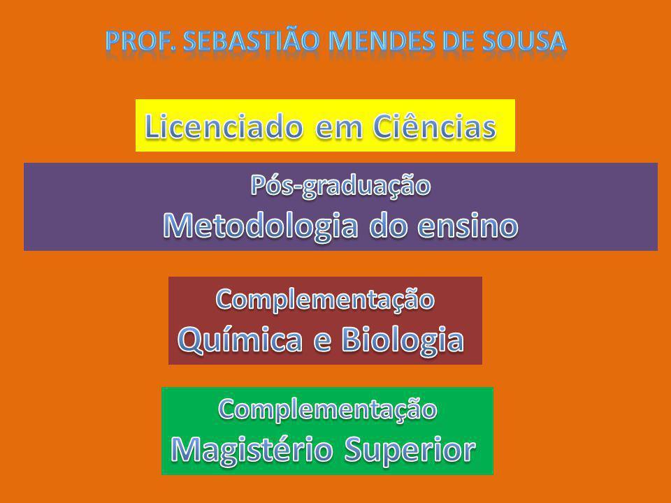 Prof. Sebastião mendes de Sousa Licenciado em Ciências