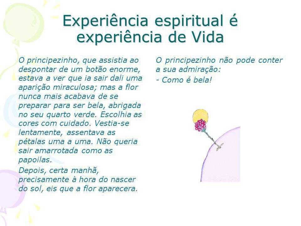 Experiência espiritual é experiência de Vida
