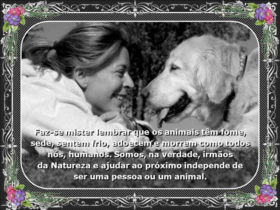 Faz-se mister lembrar que os animais têm fome, sede, sentem frio, adoecem e morrem como todos nós, humanos.