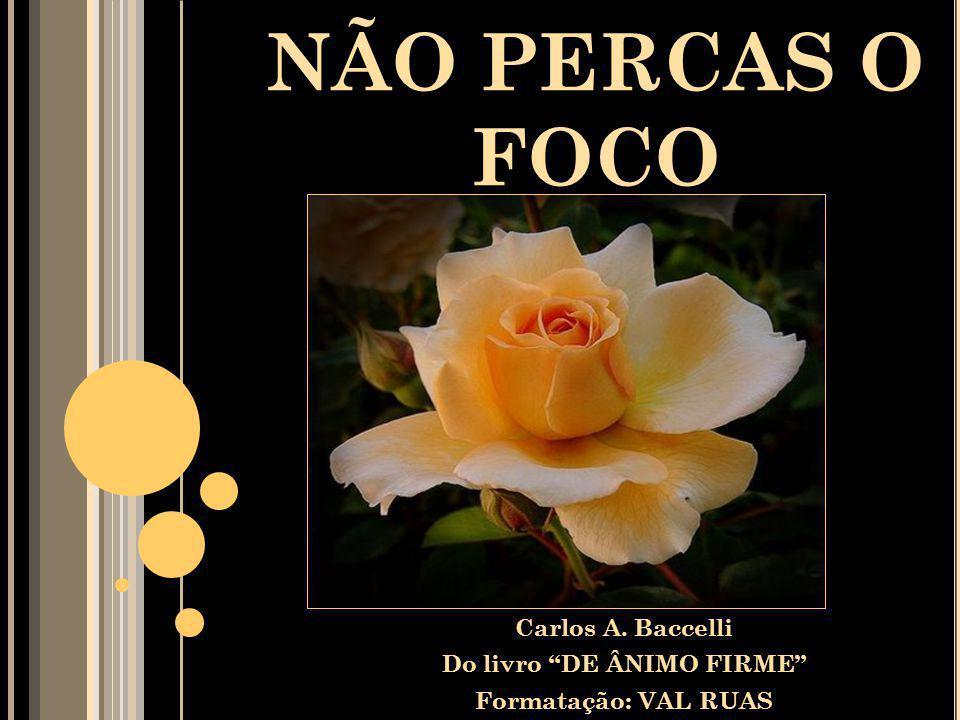 Carlos A. Baccelli Do livro DE ÂNIMO FIRME Formatação: VAL RUAS