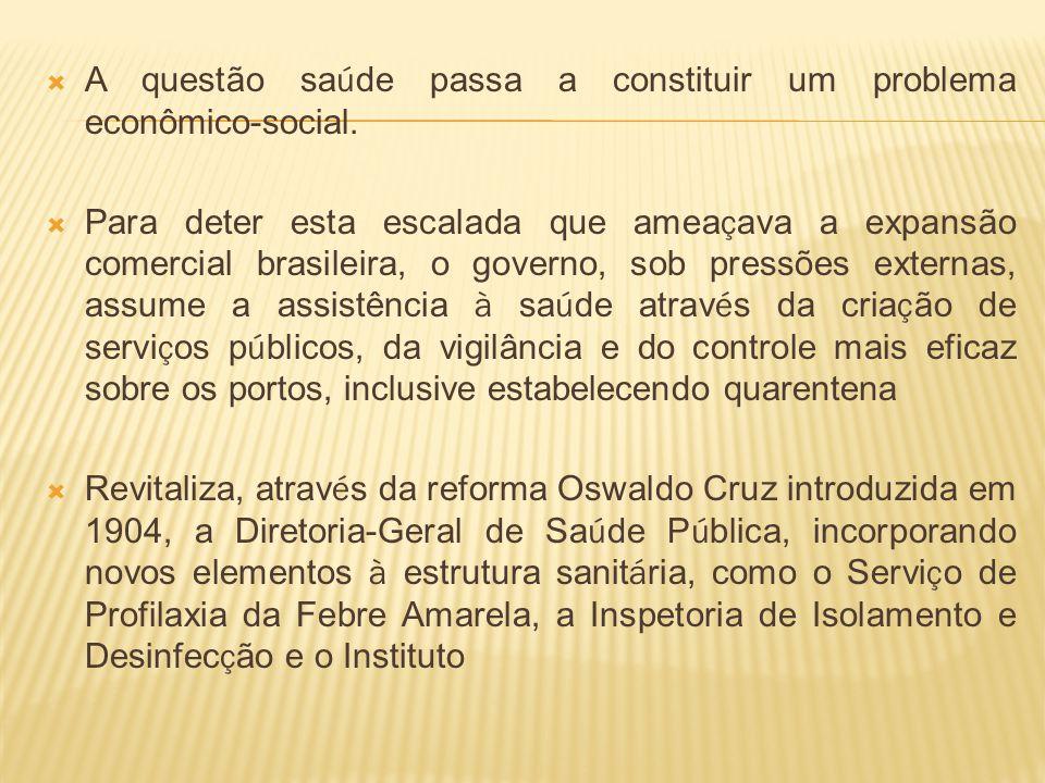 A questão saúde passa a constituir um problema econômico-social.