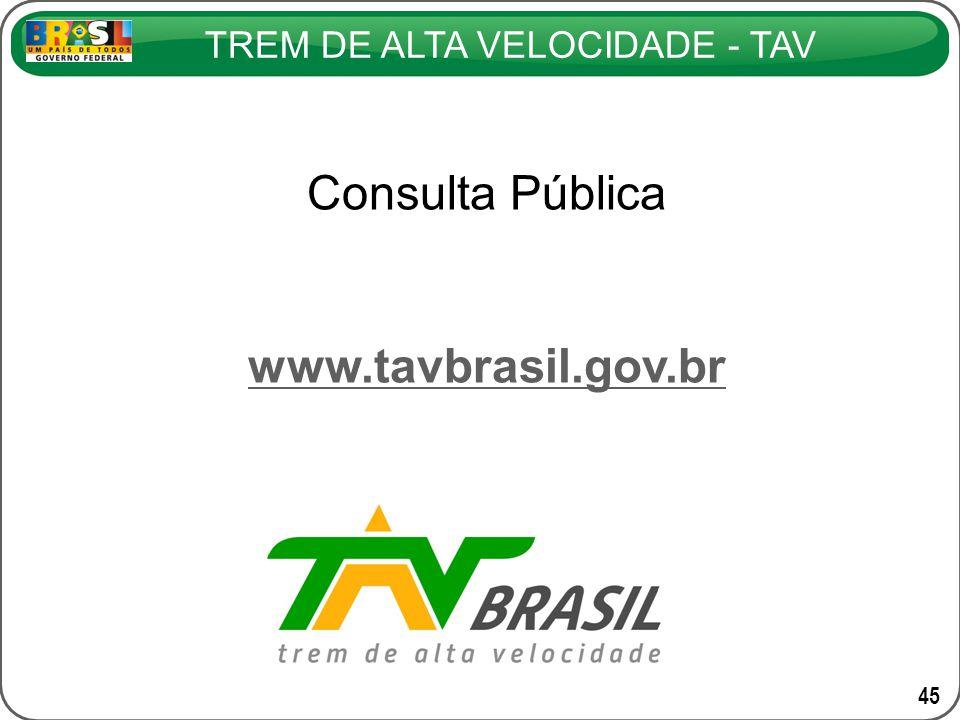 Consulta Pública www.tavbrasil.gov.br 45