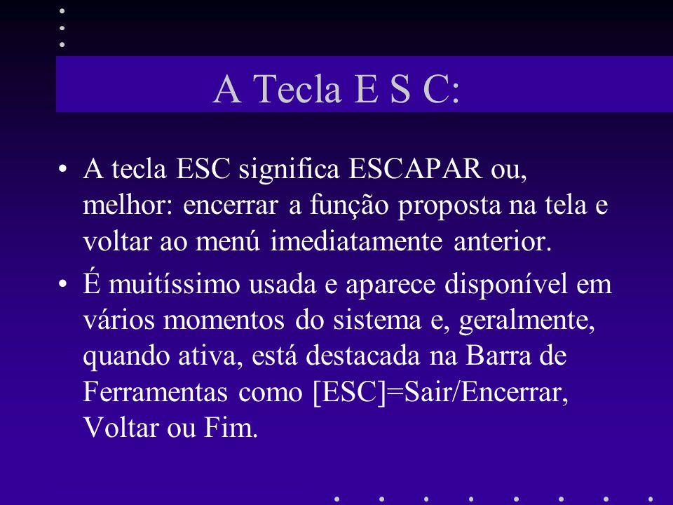 A Tecla E S C: A tecla ESC significa ESCAPAR ou, melhor: encerrar a função proposta na tela e voltar ao menú imediatamente anterior.