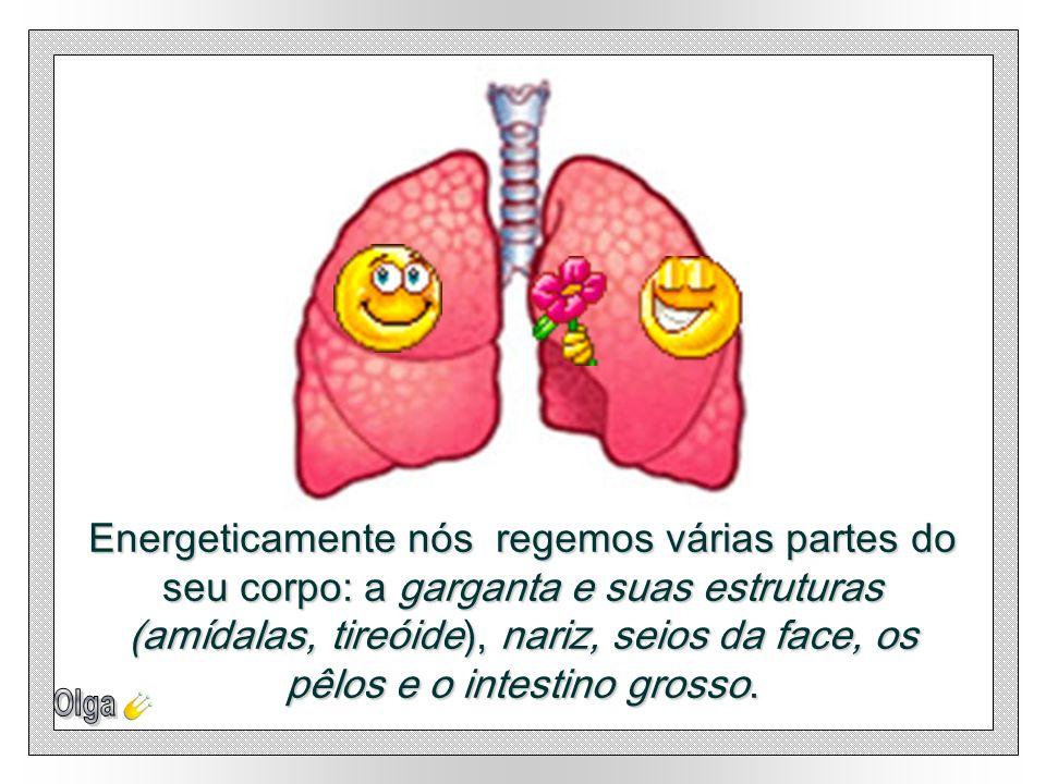 Energeticamente nós regemos várias partes do seu corpo: a garganta e suas estruturas (amídalas, tireóide), nariz, seios da face, os pêlos e o intestino grosso.