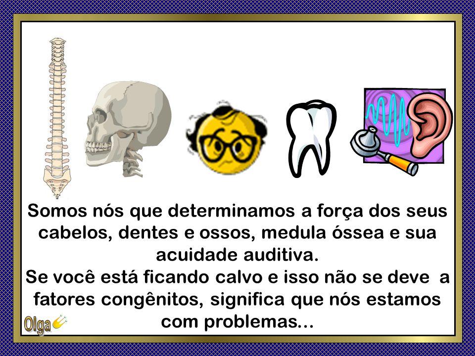 Somos nós que determinamos a força dos seus cabelos, dentes e ossos, medula óssea e sua acuidade auditiva.