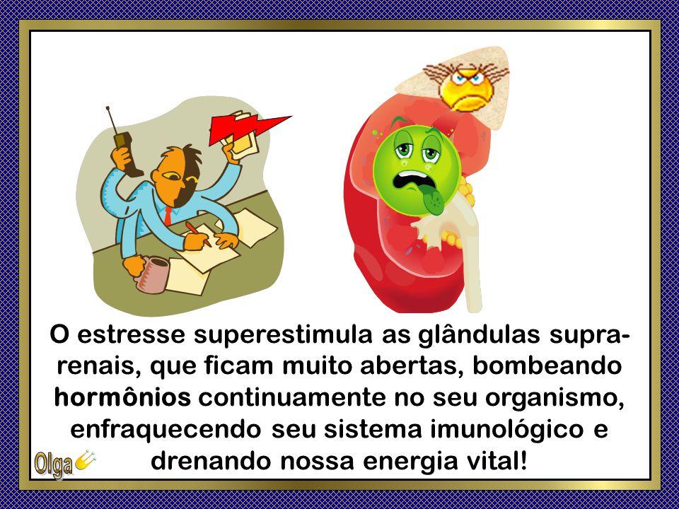 O estresse superestimula as glândulas supra-renais, que ficam muito abertas, bombeando