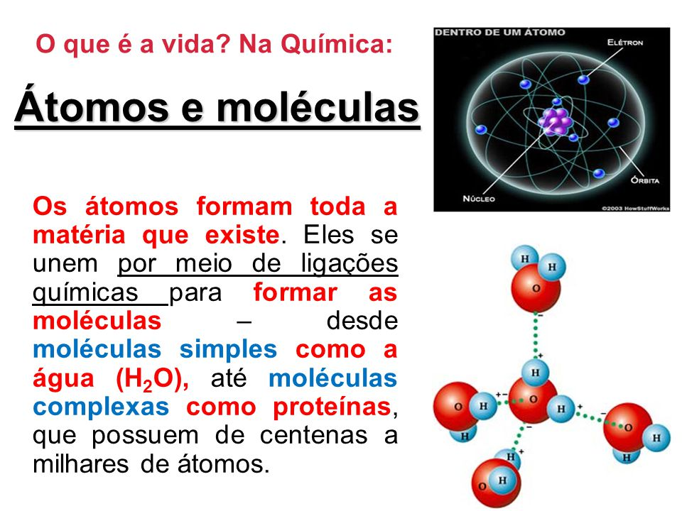 Átomos e moléculas O que é a vida Na Química: