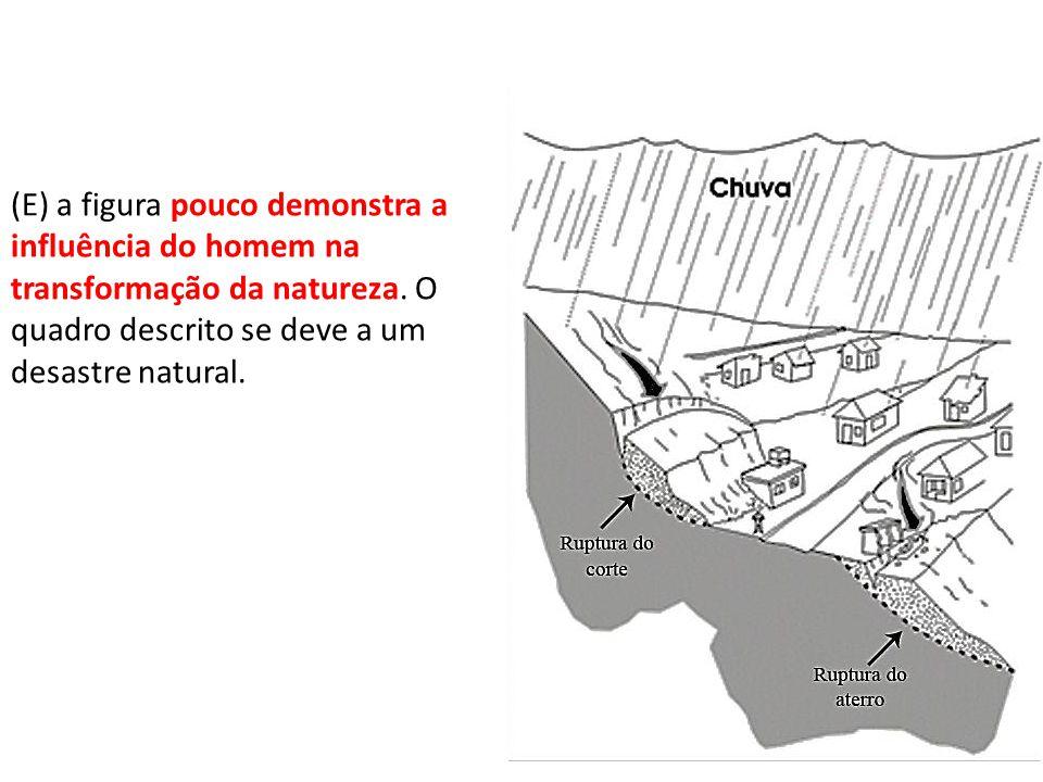 (E) a figura pouco demonstra a influência do homem na transformação da natureza.