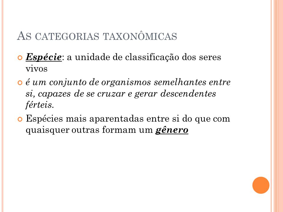 As categorias taxonômicas