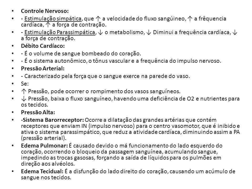 Controle Nervoso: - Estimulação simpática, que ↑ a velocidade do fluxo sangúineo, ↑ a frêquencia cardíaca, ↑ a força de contração.