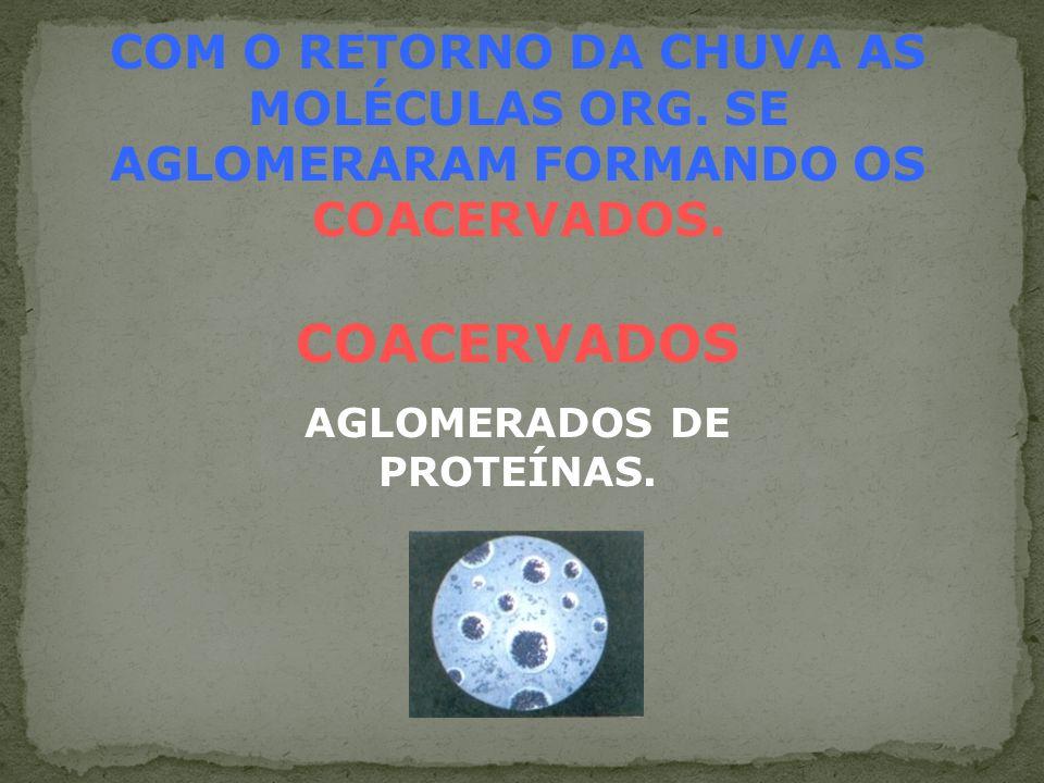 AGLOMERADOS DE PROTEÍNAS.