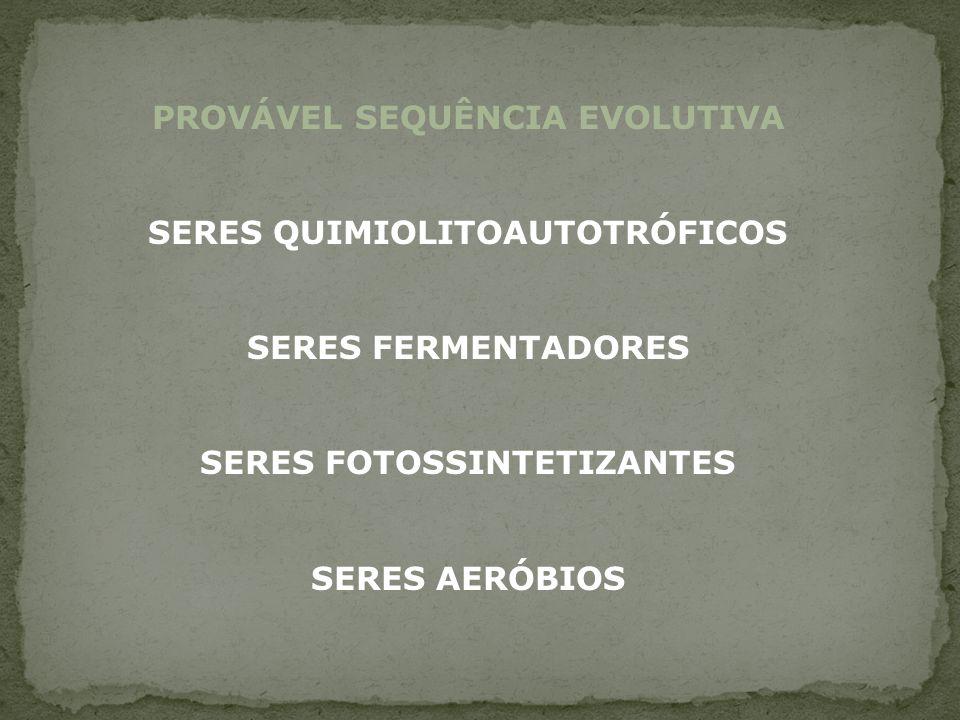 PROVÁVEL SEQUÊNCIA EVOLUTIVA
