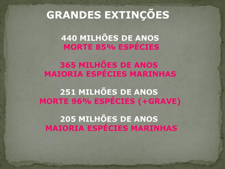 MAIORIA ESPÉCIES MARINHAS MORTE 96% ESPÉCIES (+GRAVE)