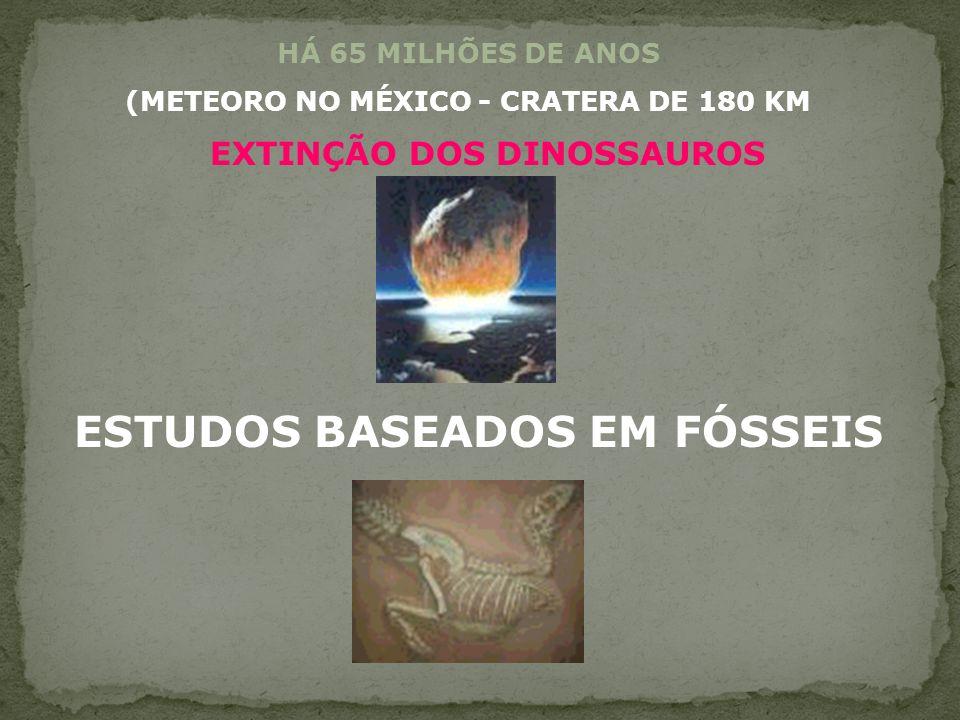 (METEORO NO MÉXICO - CRATERA DE 180 KM