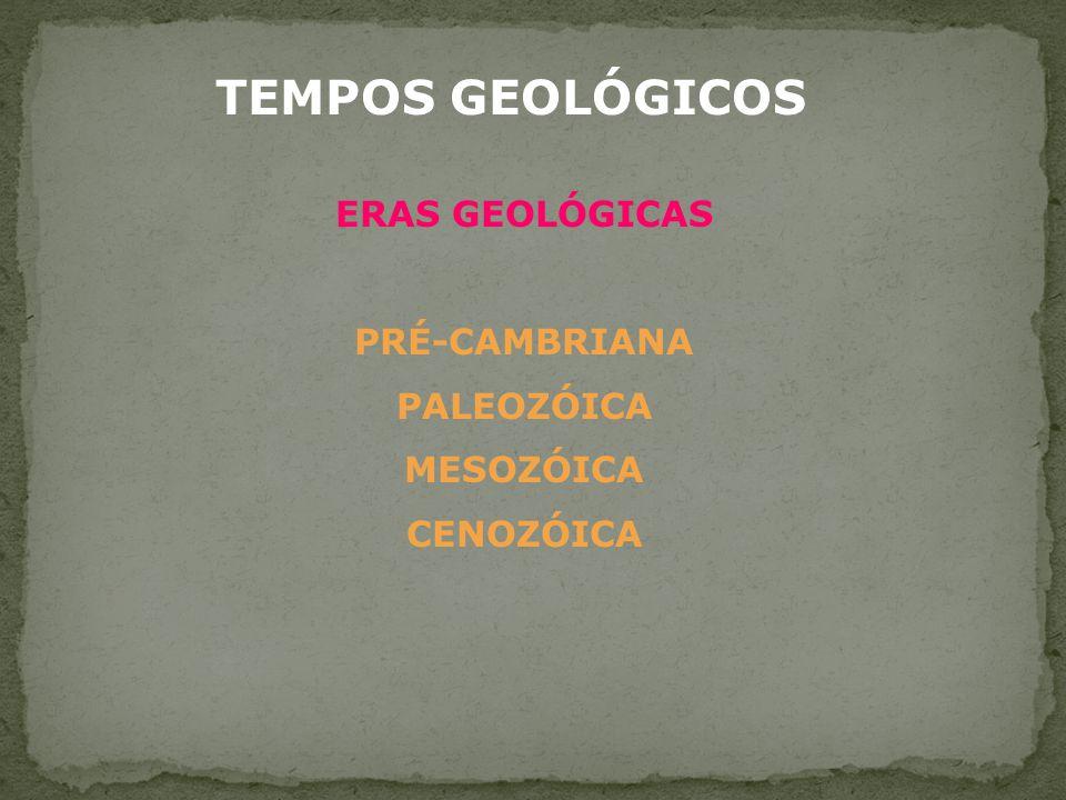 TEMPOS GEOLÓGICOS ERAS GEOLÓGICAS PRÉ-CAMBRIANA PALEOZÓICA MESOZÓICA