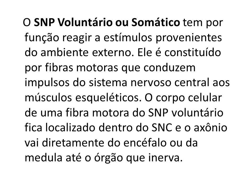 O SNP Voluntário ou Somático tem por função reagir a estímulos provenientes do ambiente externo.