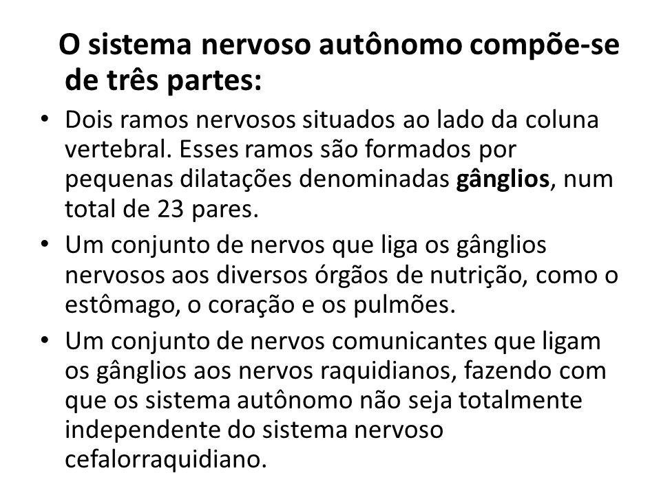 O sistema nervoso autônomo compõe-se de três partes: