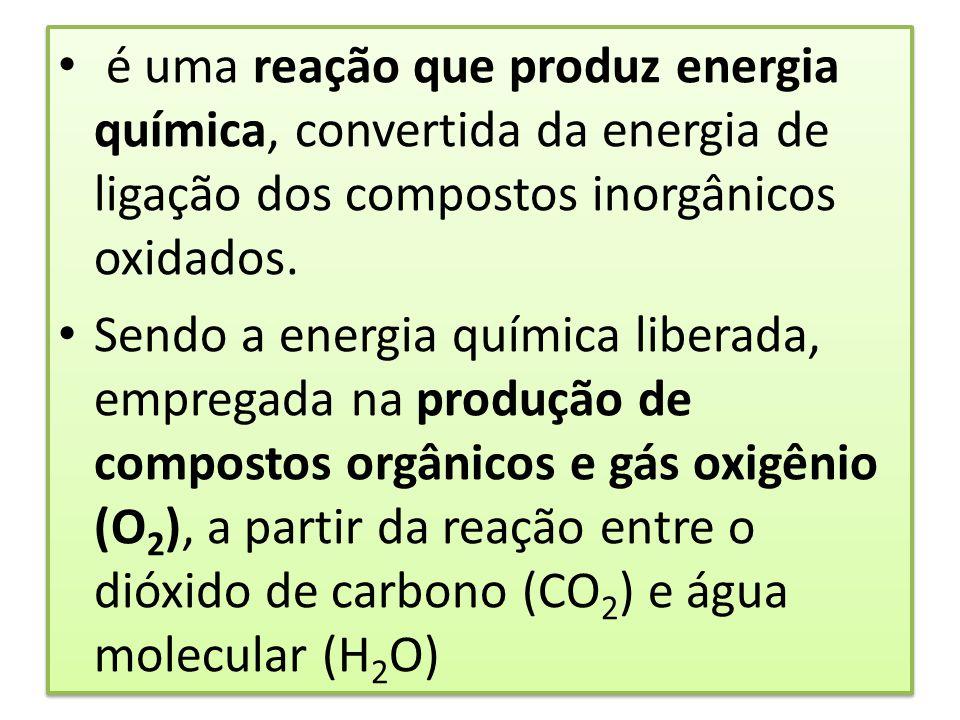 é uma reação que produz energia química, convertida da energia de ligação dos compostos inorgânicos oxidados.