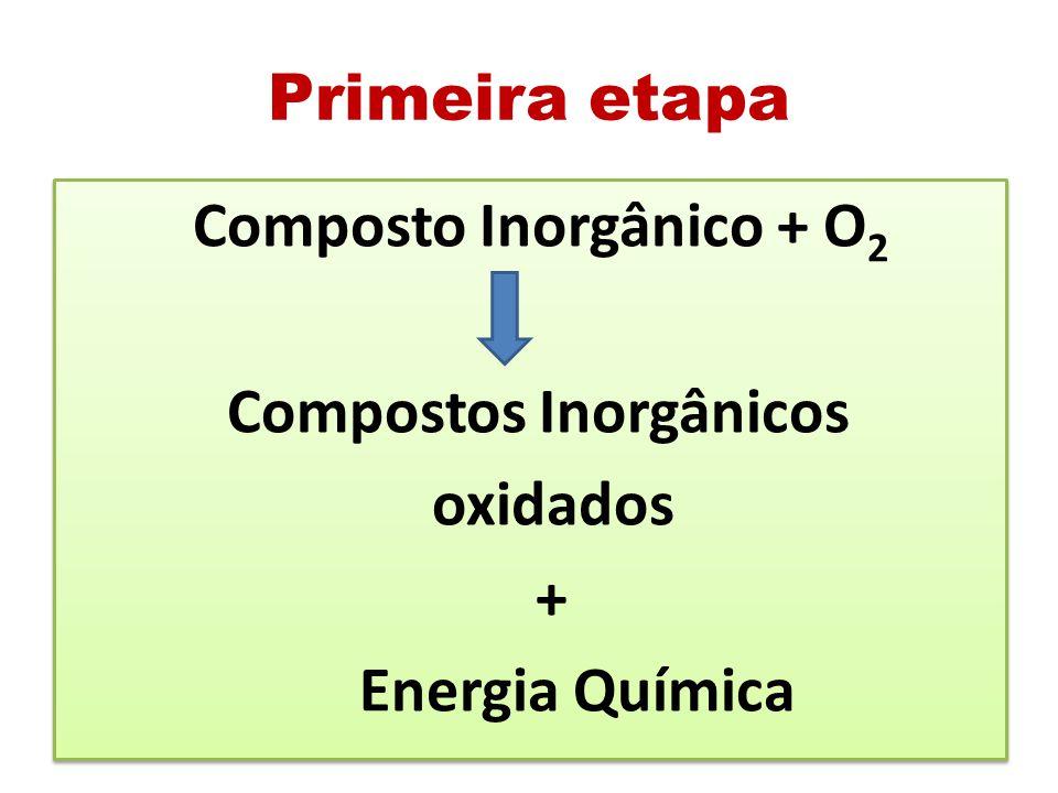Compostos Inorgânicos oxidados + Energia Química