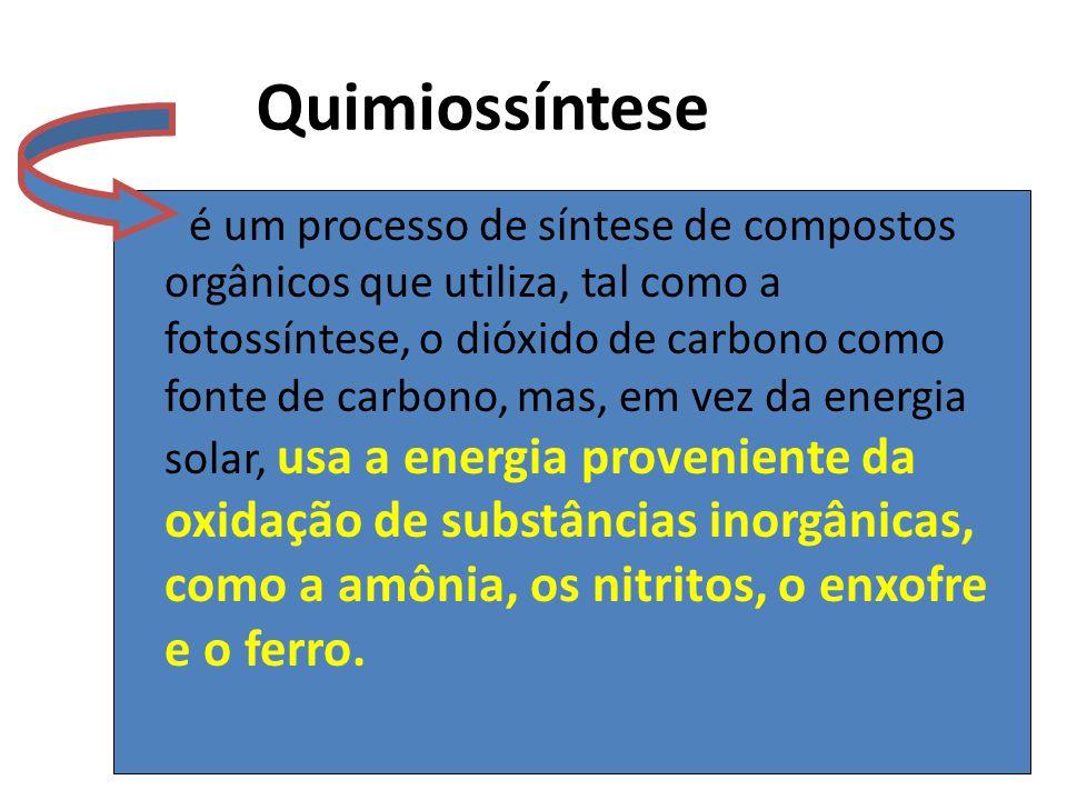 Quimiossíntese