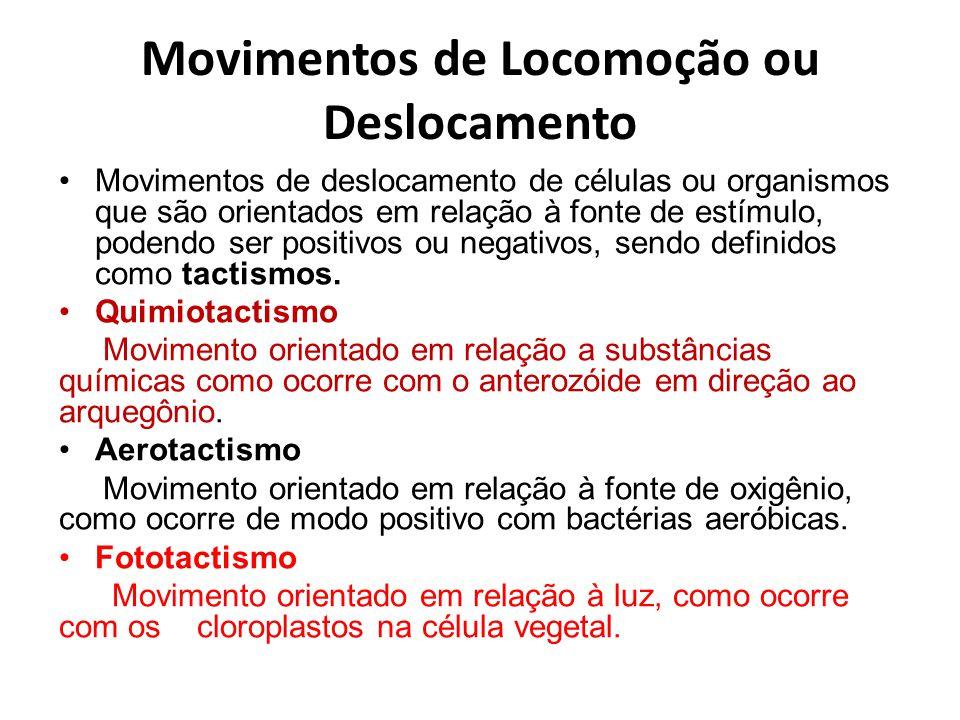 Movimentos de Locomoção ou Deslocamento